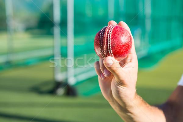 человек крикет мяча Постоянный Сток-фото © wavebreak_media