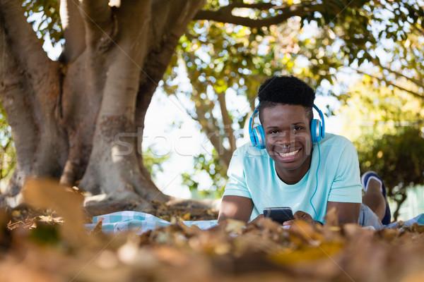 молодым человеком мобильного телефона пикник одеяло парка искусства наушники Сток-фото © wavebreak_media