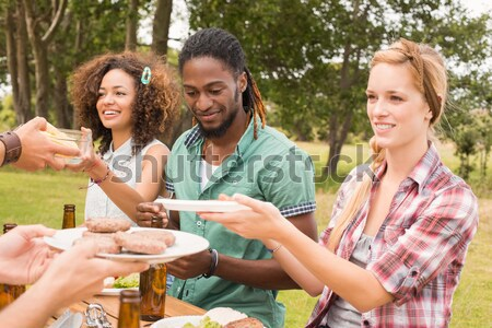Friends interacting while having a alcohol at counter Stock photo © wavebreak_media