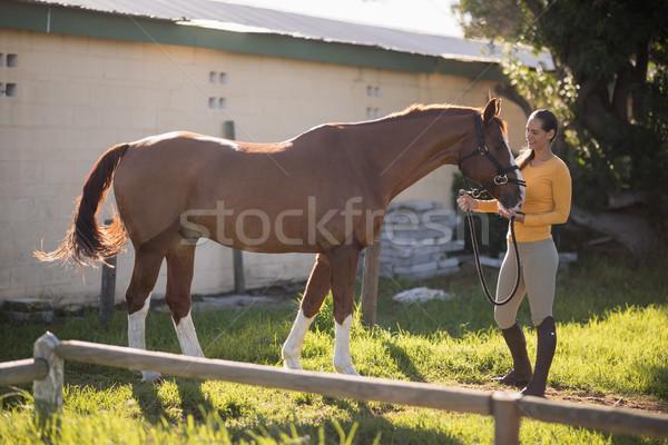 Vrouwelijke jockey paard permanente veld Stockfoto © wavebreak_media