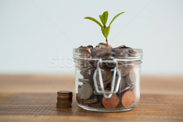 Planta crescente fora moedas jarra branco Foto stock © wavebreak_media