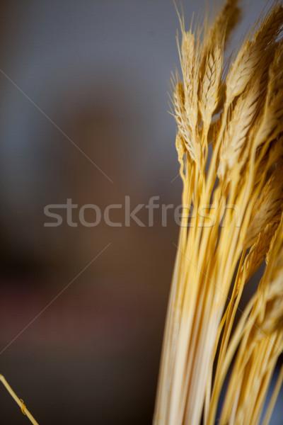 Ears of wheat in bakery shop at market Stock photo © wavebreak_media