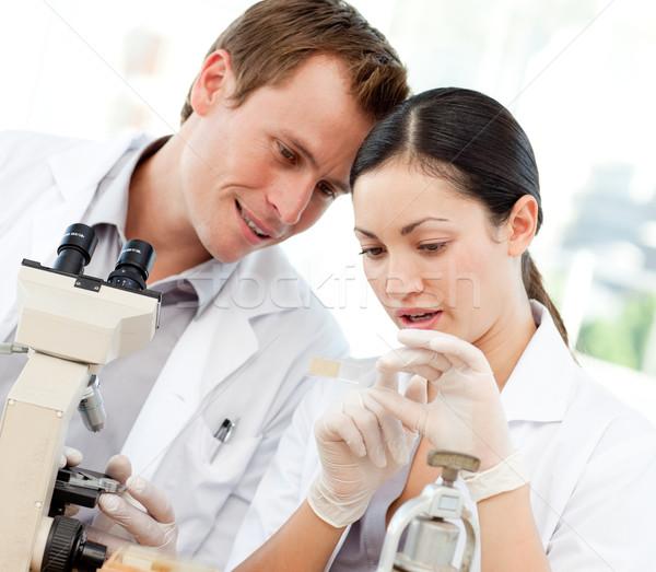 глядя слайдов микроскоп молодые женщину Сток-фото © wavebreak_media
