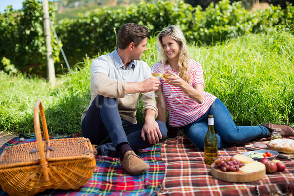 Glücklich Paar Toasten Weingläser Picknickdecke Sitzung Stock foto © wavebreak_media