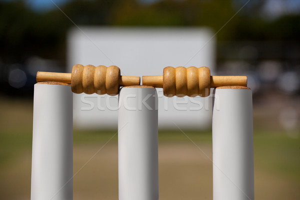 Close-up of bails on stumps Stock photo © wavebreak_media