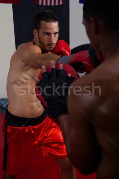 Edző férfi box fitnessz stúdió izom Stock fotó © wavebreak_media