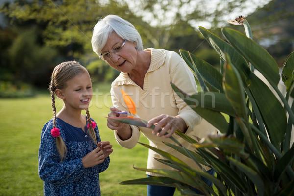 Wnuczka babcia patrząc żółty kwiat roślin uśmiechnięty Zdjęcia stock © wavebreak_media