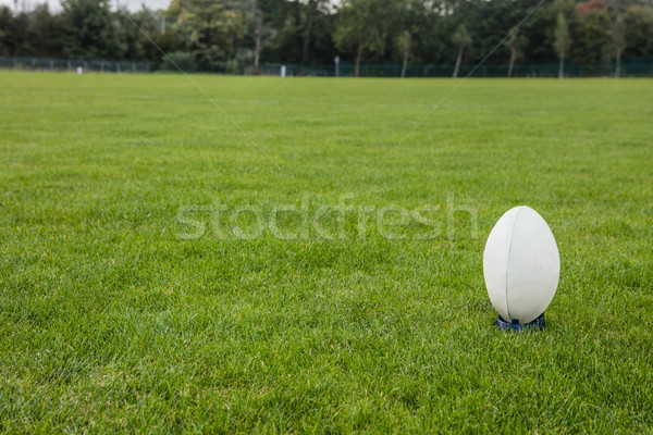 Ballon de rugby parc monde balle Photo stock © wavebreak_media