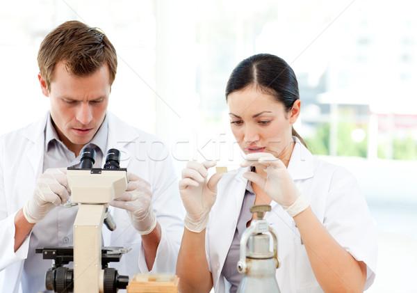 Diákok tudomány dolgozik laboratórium vonzó nő Stock fotó © wavebreak_media