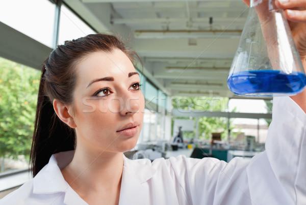 Brunette looking at an Erlenmeyer flask in a laboratory Stock photo © wavebreak_media