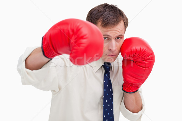 бизнесмен боксерские перчатки белый бизнеса человека костюм Сток-фото © wavebreak_media
