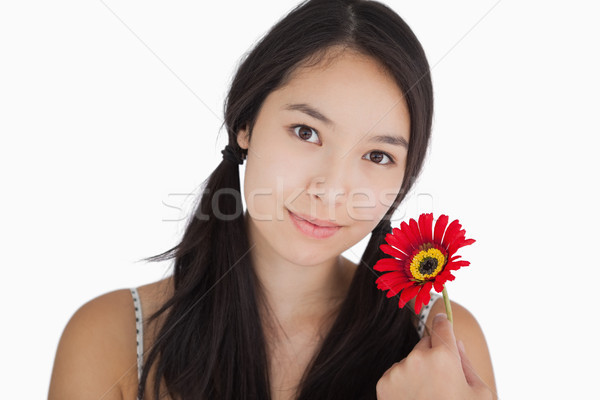 Smiling woman in pigtails holding red flower Stock photo © wavebreak_media
