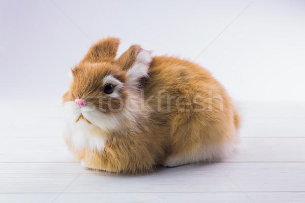 Ginger bunny rabbit Stock photo © wavebreak_media