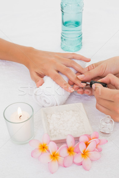 Beautician applying nail varnish to female clients nails Stock photo © wavebreak_media