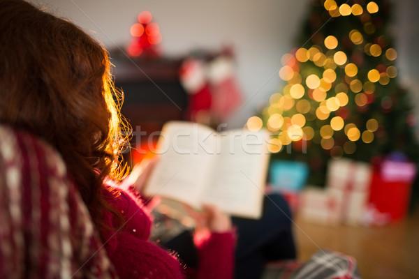 Hátsó nézet vörös hajú nő olvas karácsony otthon nappali Stock fotó © wavebreak_media