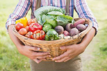 Farmer carrying basket of veg Stock photo © wavebreak_media