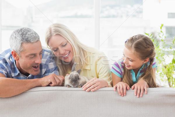 家族 演奏 ウサギ ソファ ホーム 幸せな家族 ストックフォト © wavebreak_media