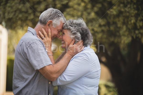 Boldog idős pár áll szemtől szembe udvar oldalnézet Stock fotó © wavebreak_media