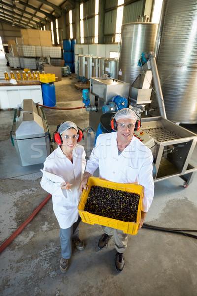 Portrait of happy technicians holding fresh olives in crate Stock photo © wavebreak_media