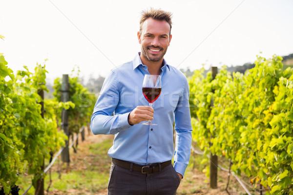 Retrato hombre vina sonriendo Foto stock © wavebreak_media