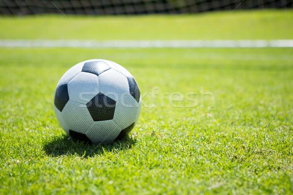 Soccer ball giocare campo albero nubi Foto d'archivio © wavebreak_media