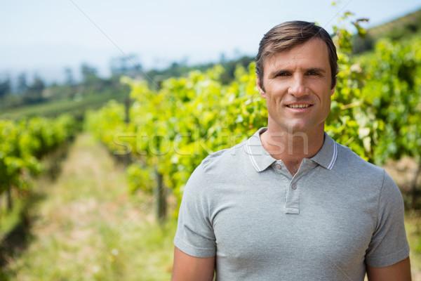 Portrait of smiling vintner standing in vineyard Stock photo © wavebreak_media