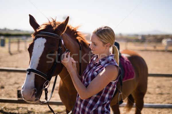 вид сбоку молодые женщины Постоянный лошади области Сток-фото © wavebreak_media