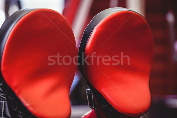 Close-up of two focus mitts Stock photo © wavebreak_media