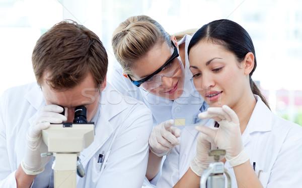 Pessoas olhando microscópio jovens trabalhar medicina Foto stock © wavebreak_media