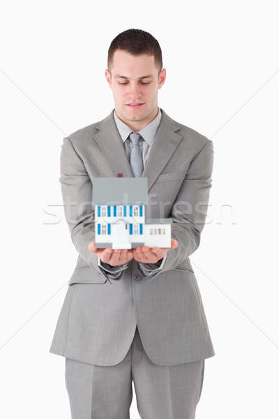 Stock fotó: Portré · üzletember · néz · miniatűr · ház · fehér