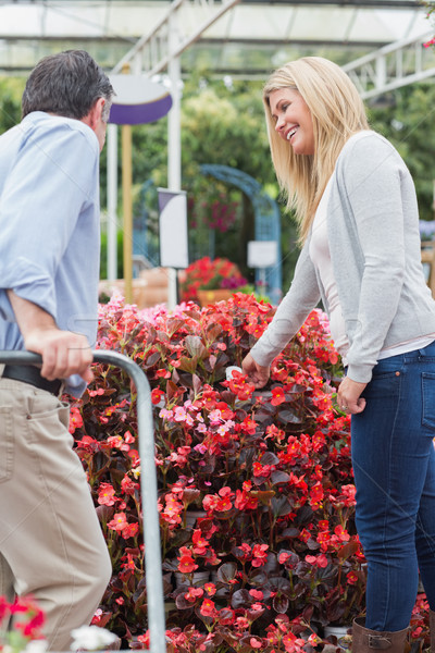 Couple talking while choosing flowers in garden center Stock photo © wavebreak_media