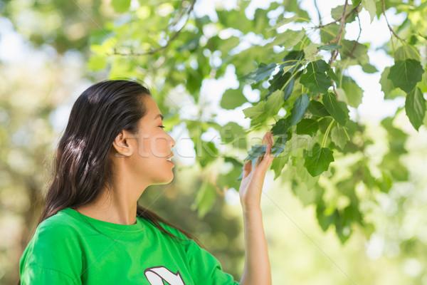 Donna verde riciclaggio tshirt foglie parco Foto d'archivio © wavebreak_media