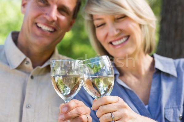 Smiling couple toasting wine glasses Stock photo © wavebreak_media