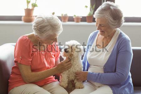 Happy couple cuddling with puppy on sofa Stock photo © wavebreak_media