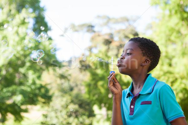 Kicsi fiú buborékfújás park napos idő gyermek Stock fotó © wavebreak_media