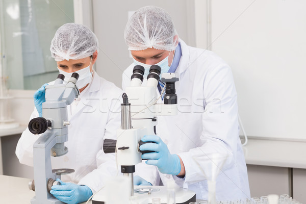 Scientists working attentively with microscopes Stock photo © wavebreak_media