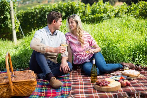 Glücklich Paar halten Weingläser Picknickdecke Sitzung Stock foto © wavebreak_media