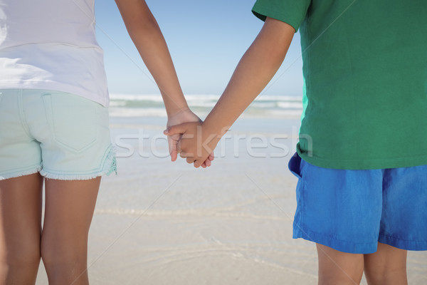 Mid section of siblings holding hands at beach Stock photo © wavebreak_media