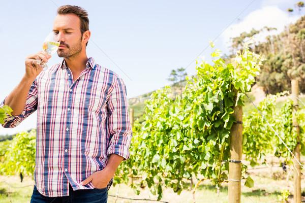 Hombre guapo potable vino vina cielo Foto stock © wavebreak_media