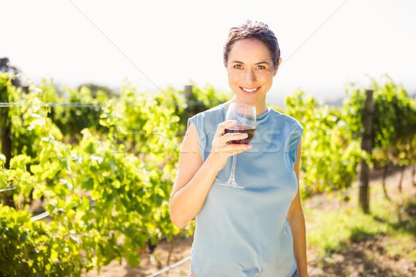 Portré fiatal nő tart borospohár szőlőskert napos idő Stock fotó © wavebreak_media