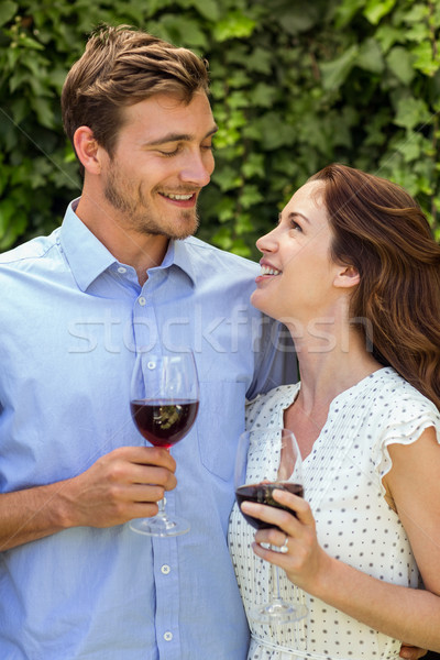 Happy couple looking at eachother while holding wineglasses Stock photo © wavebreak_media