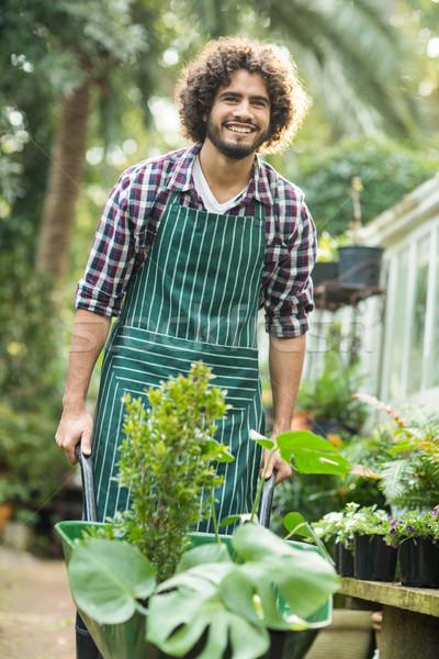 Boldog férfi kertész hordoz növények talicska Stock fotó © wavebreak_media