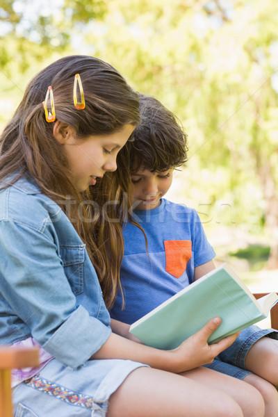 Yandan görünüş çocuklar okuma kitap park bank Stok fotoğraf © wavebreak_media