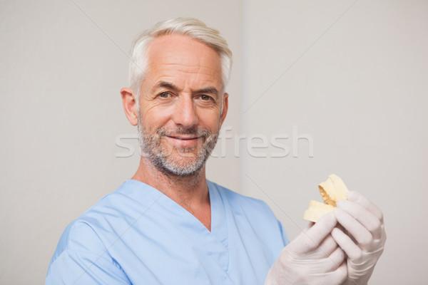 Fogorvos kék cserjék tart száj modell Stock fotó © wavebreak_media