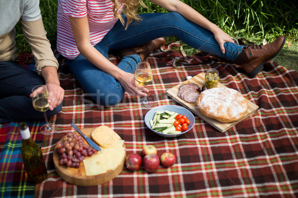 Couple holding wineglasses while sitting on picnic blanket Stock photo © wavebreak_media
