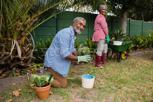 Stock photo: Portrait of senior couple working in backyard