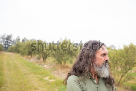 Thoughtful man standing in olive field Stock photo © wavebreak_media