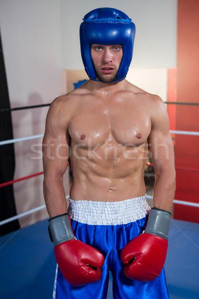 Portret mężczyzna bokser niebieski stałego Zdjęcia stock © wavebreak_media