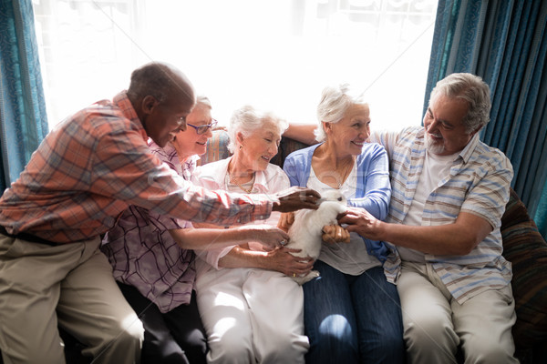 Smiling senior friends playing with rabbit at nursing home Stock photo © wavebreak_media