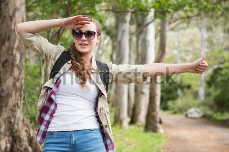 Woman hitchhiking on a sunny day Stock photo © wavebreak_media